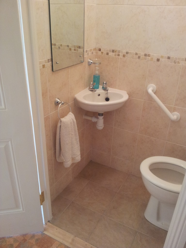 Under stairs toilet 6 (3)
