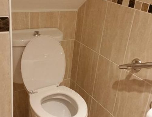 Under stairs toilet 9